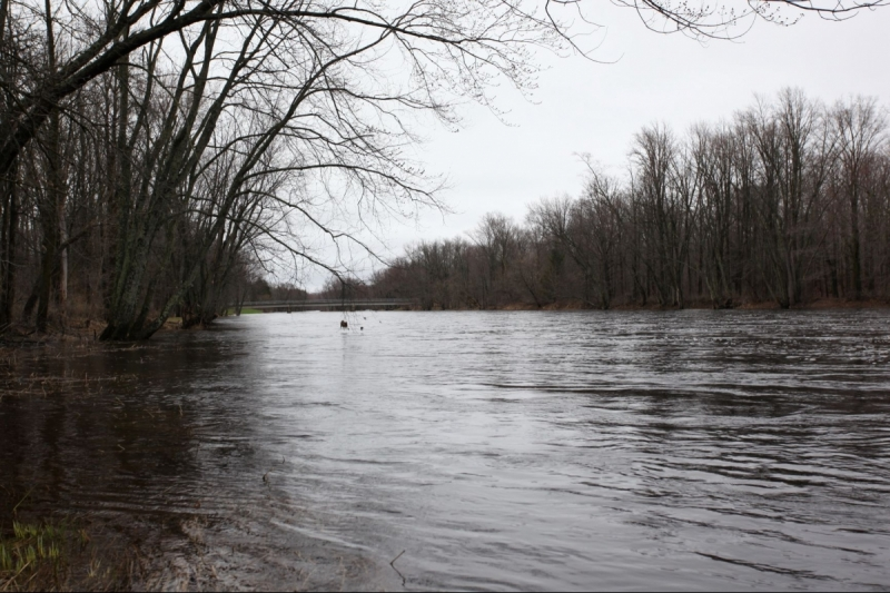 Jump River Frontage for Sale - Acreage